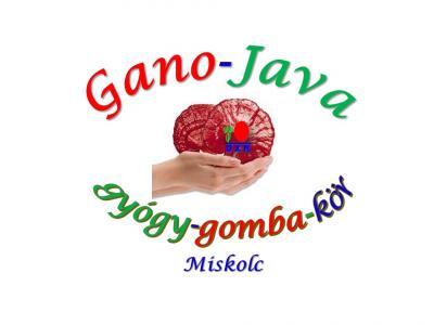 Gano-Java