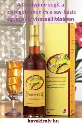 DXN Cordypine enzim ital kínai hernyógombából és ananász enzimből