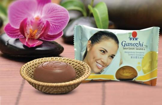 ganozhi_soap_540_01
