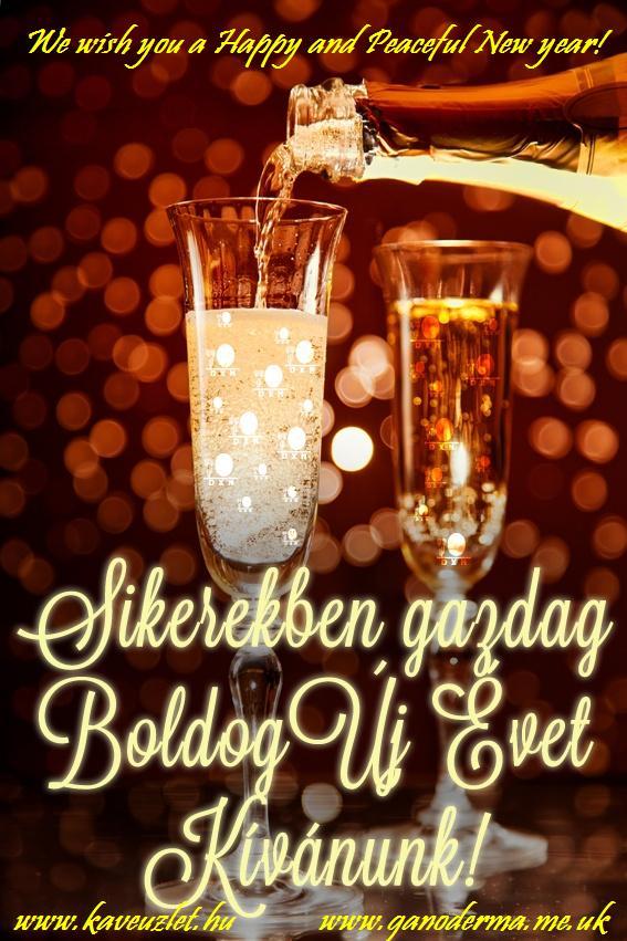 Happy New Year! Boldog Új évet! www.kaveuzlet.hu   www.ganoderma.me.uk