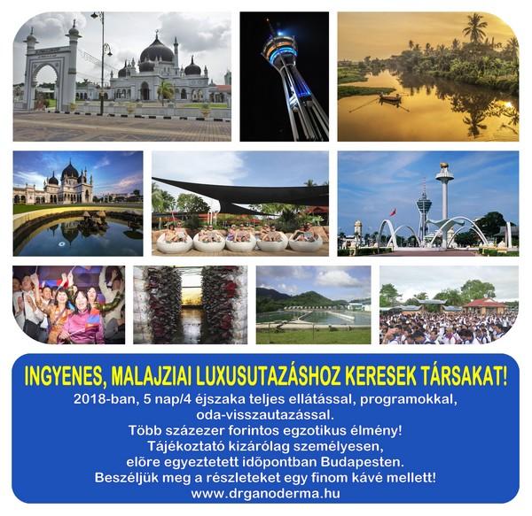 Ingyenes utazás Malajziába, a DXN 25. születésnapjára