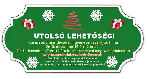 Karácsonyi ajándék - Ingyenes csomagküldési akció!