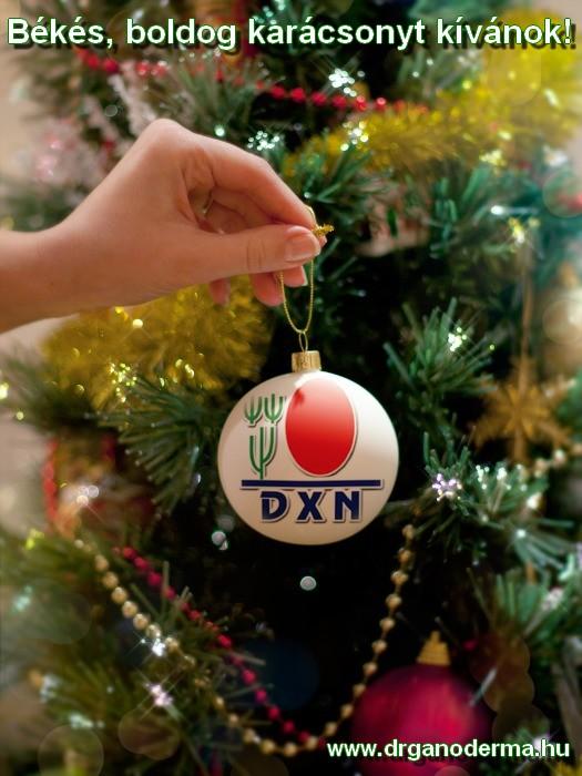 Békés, boldog karácsonyt kívánok!