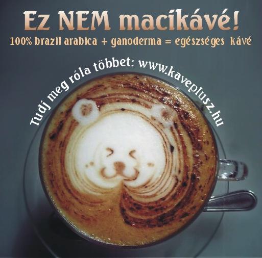 kávés kép macival