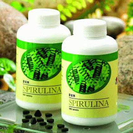 spirulina egy kékeszöld alga