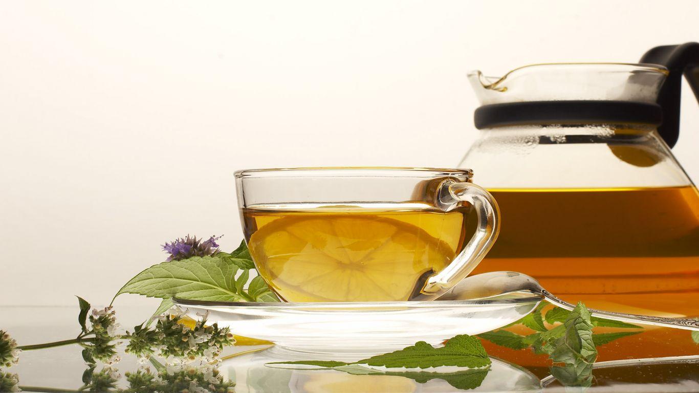 Reishi Gano Tea - Teaidő