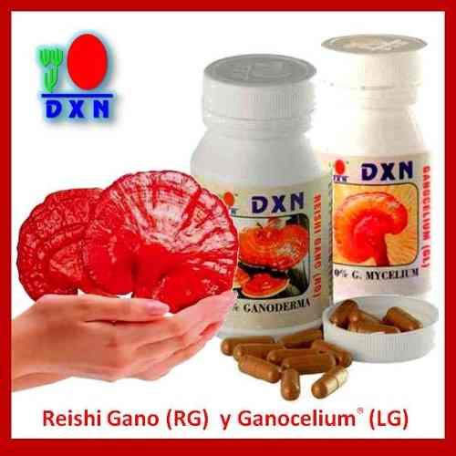 Ganoderma kapszula