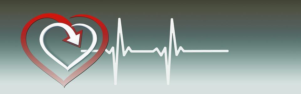 Szív, EKG