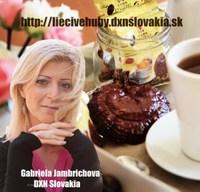 Gabriela Jambrichova SA